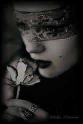 Gothic rose by wenzdy