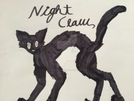 Nightclaw by xXXThunderstormXXx