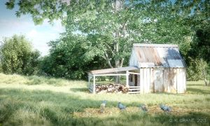 The Old Shed by phaceless2