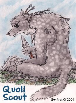 Quoll Scout by swiftrat