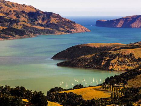 New Zealand Bay View 2 by hesitation