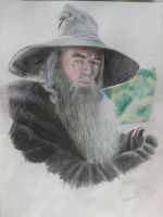 Gandalf the Grey by Mer1Lsky