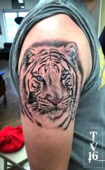 White Tiger-Apprenticeship Tattoo by Illusions-of-TV