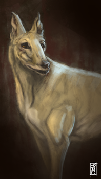 The Greyhound by RawConceptz