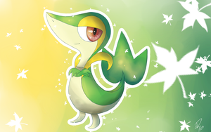 A Little Snivy by Doovid97
