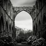 090 - Ruins of Abbey II by ThierryV