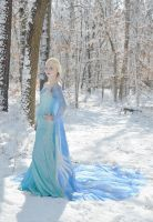 Elsa The Snow Queen II by AngelaClaytonCosplay