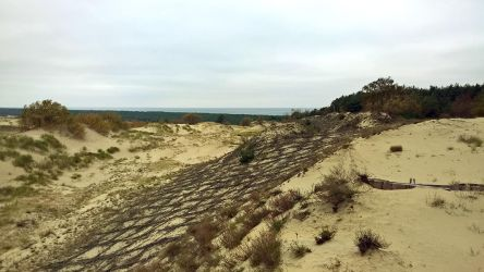 Curonian Spit :October: 9 by J-dono