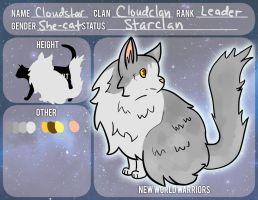 Cloudstar {Starclan} by thefearlesshobo