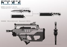 Project RISE: Weapon Concepts by TravisHarris