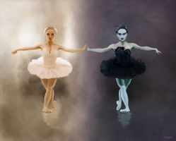 Mirrored Swans by oogalaboo