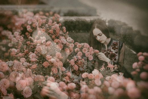 The Rose Garden by Econita