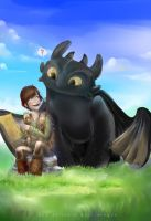 How to train your dragon by Chibi-Rina