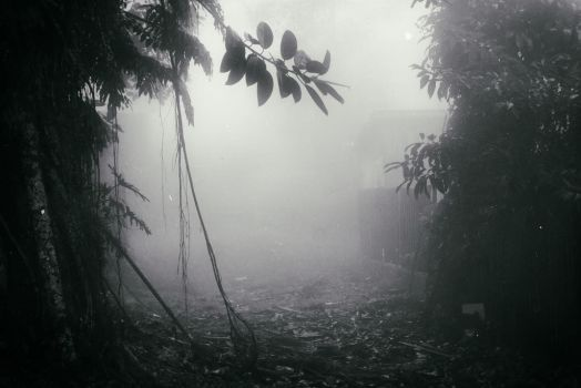 Through soundless fog, ghosts call my aching heart by AtEternitysGate