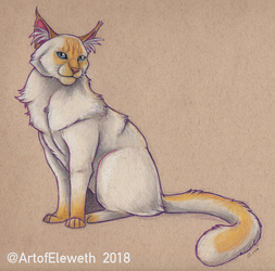 Coloured Sketchie: Cat commission by Eleweth