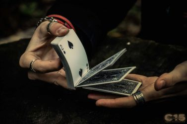 Bicycle playing cards 1 by case15