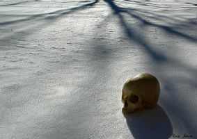 The Dead of Winter by ReinNomm