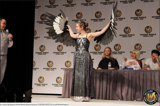 Mockingjay Dress by spring-steel