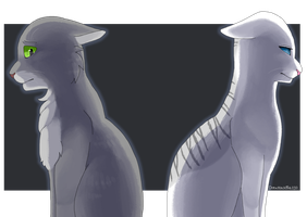 20) Dovewing and Ivypool by Drawmachiine