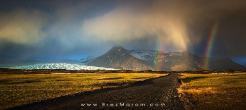 Nature's Array by erezmarom