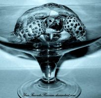 Still Life with a Turtle by YourFavoriteRussian