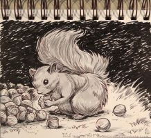 InkTober - Day 12 - A Squirrel by Heidi-Celestial