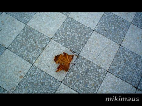 Autumn's here - New ID by MikiMaus