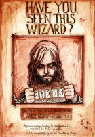 Have You Seen This Wizard? by nightgrowler