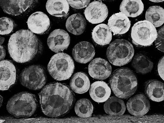 Logs by ulyce