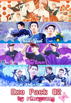 [300713] EXO Pack #2 by rinayoong