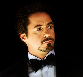 Robert Downey Jr by donvito62