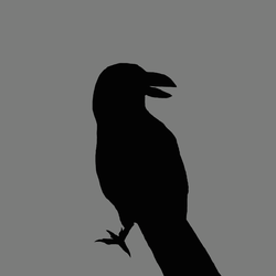 Crow silhouette by AgentMaryland93