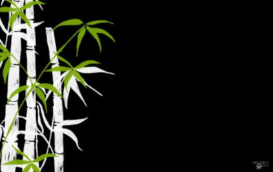 Bamboo by Natsum-i