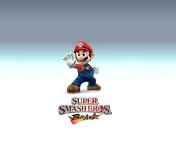 Super Smash Bros. Brawl by hellcrawler