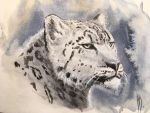 Snow Queen (Panthera uncia) by dustdevil