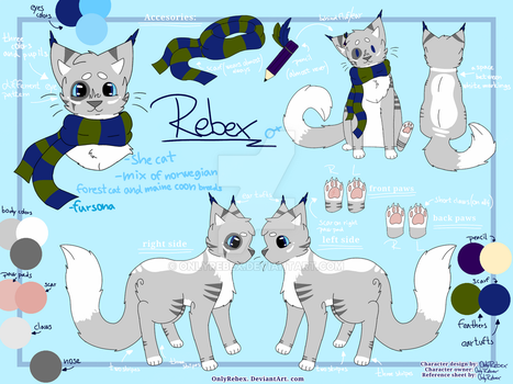 Rebex-ref.sheet November-2017 by OnlyRebex