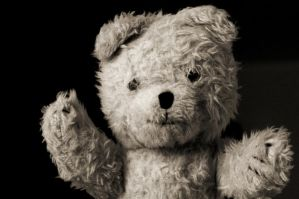 My Teddy by fourte3n