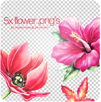 5x flower .png's by frozen-roos