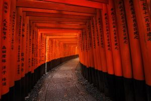 Torii Path by porbital