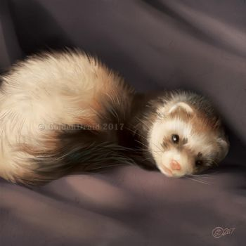 Sable Ferret - SpeedPaint by GoldenDruid