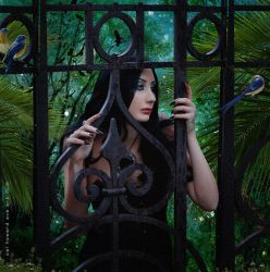 You Can Cage the Singer by AVAdesign