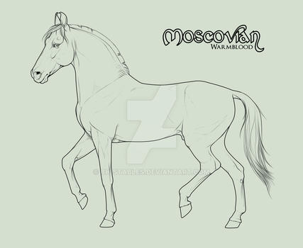 Moscovian stallion official lineart - section C by BH-Stables