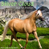 Silver Cloud HEE by MClaireB