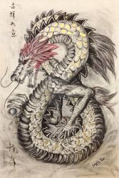 Year of the Dragon by j0rosa
