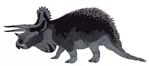 Triceratops horridus by TheMorlock