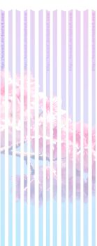 Background FLOWER Pink and Blue by tesumii