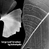 Large leaf brushes by butnotquite