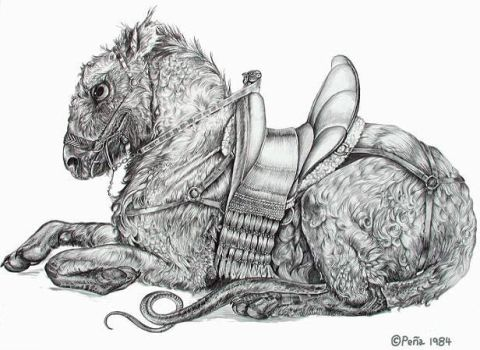 Domesticated thing with saddle by Reptangle