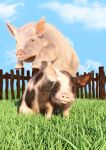 Playful Pigs by Elle-Arden