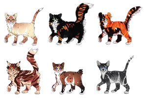 Feline Adoptables 12 [ CLOSEd ] by Chintzy-Adopts